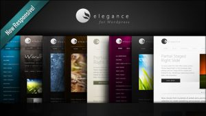 elegance-wordpress-theme